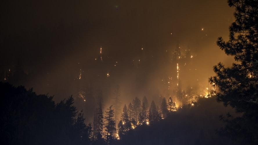 Con il progetto Fireweb diciamo no agli incendi boschivi